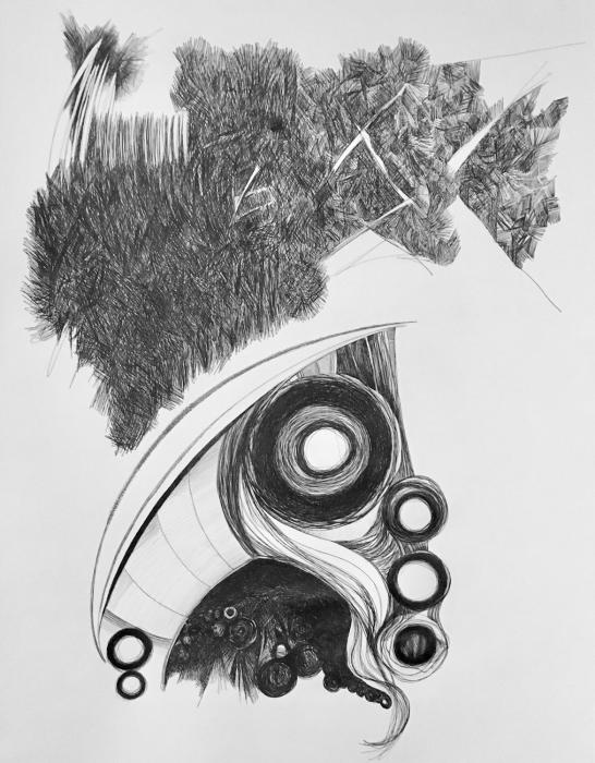 """Untitled IV""   ball point pen on paper, 24"" x 18"""